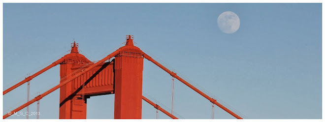 32. Golden Gate Bridge SF, CA.
