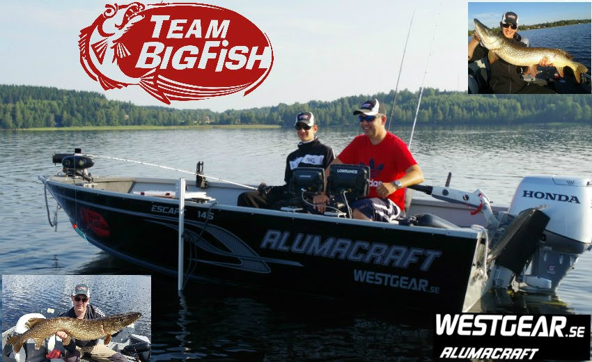 TEAM BigFish Fiskeblogg