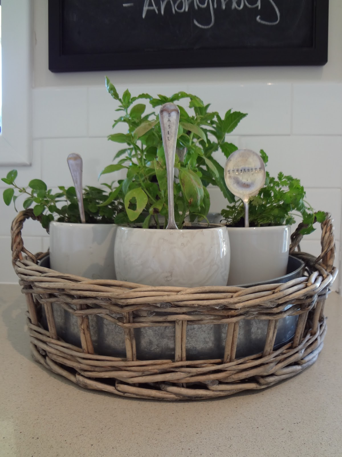 Chalk talk herbs for Kitchen herb garden