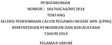 Pendaftaran CPNS Kemendikbud  2014 Website Panselnas cpns.kemdikbud