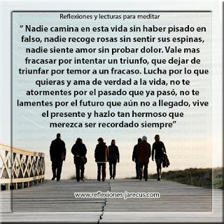 vida, camina, falso, rosas, espinas, amor, dolor, triunfo, fracaso, temor, ama, hermoso