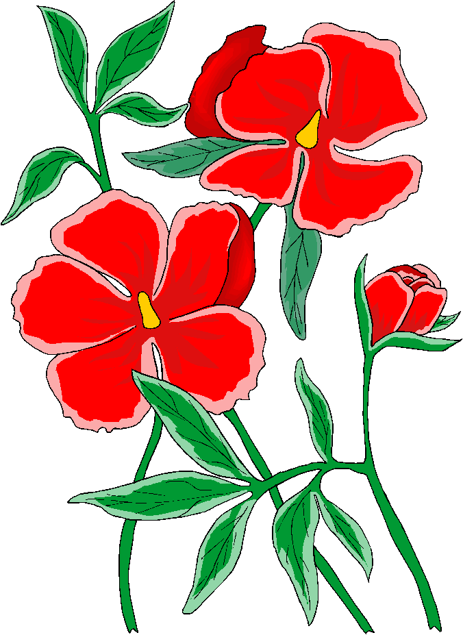 Beautiful Red Flower Free Clipart