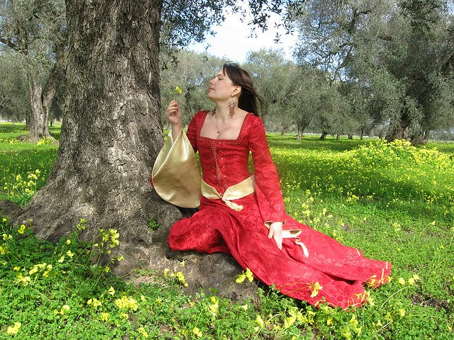 Red Medieval Wedding Dresses Picture