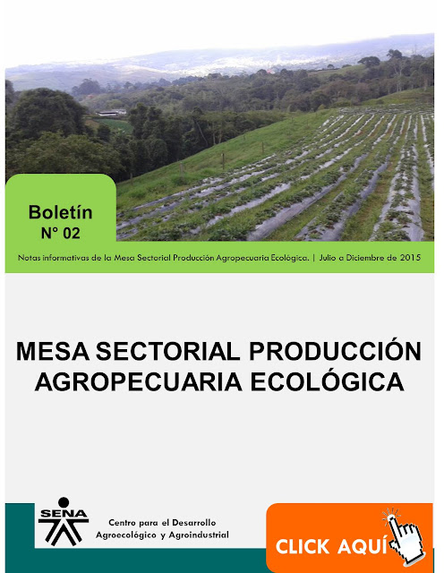 Boletin_Mesa_Sectorial_No2