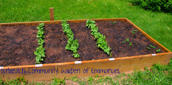 Outreach Community Garden of Emmanuel