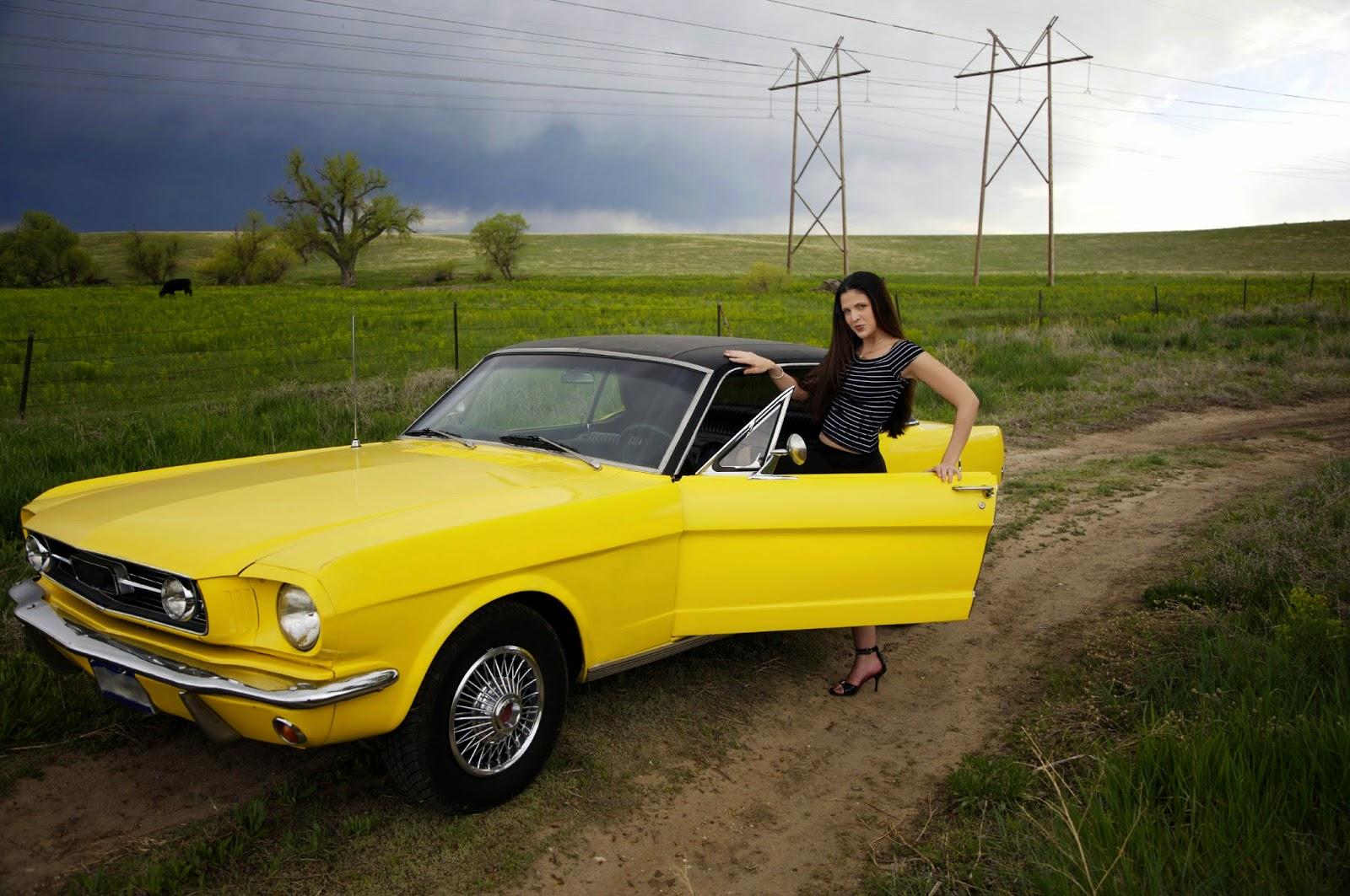 Crown victoria wheel alignment ebook 80 off gallery free ebooks the global small business blog january 2015 today in global small business the ford mustang is fandeluxe Images