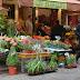 Les Floralies - Rue Cler