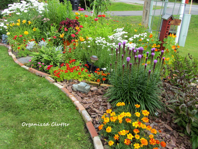 Annual and Perennial Border