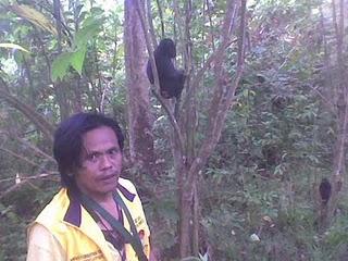 tangkoko guide jotje lala