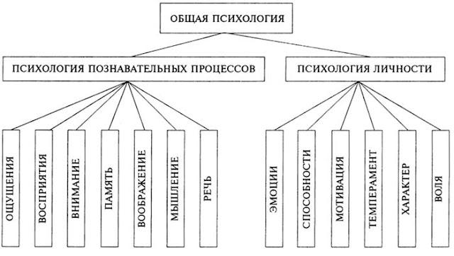 Схемы и таблица по психологии
