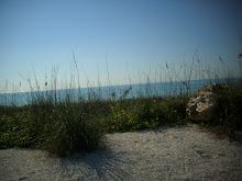 Englewood Beach 2011