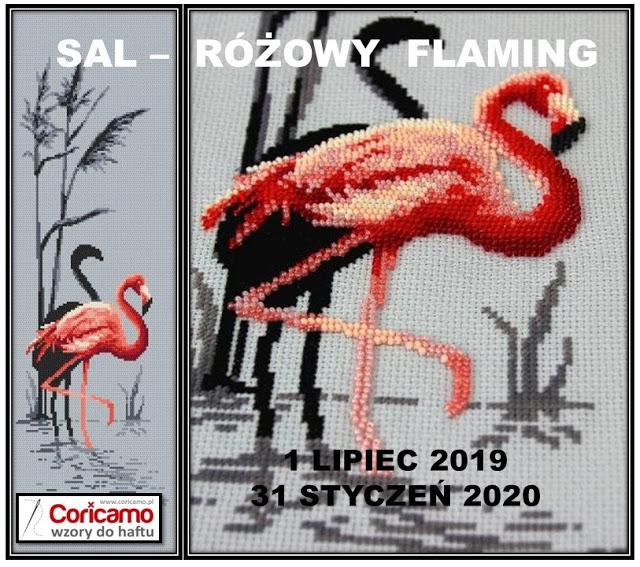 Sal-Różowy Flaming