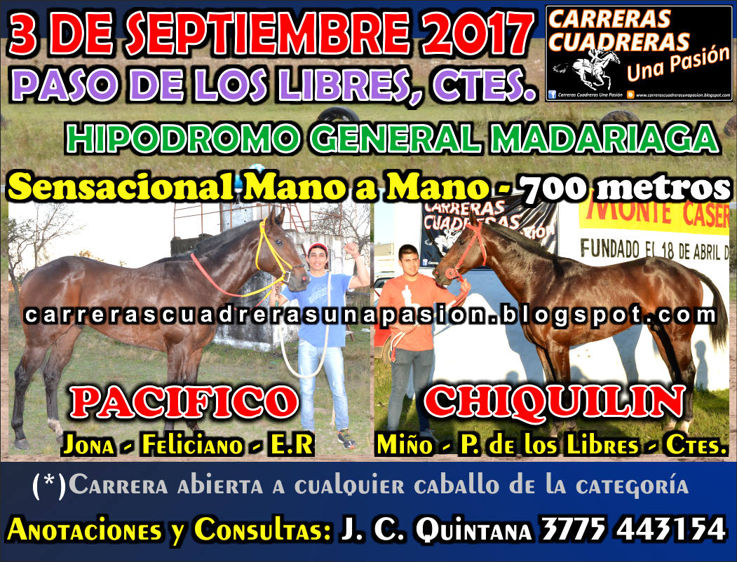 P. DE LOS LIBRES - CLASICO 700