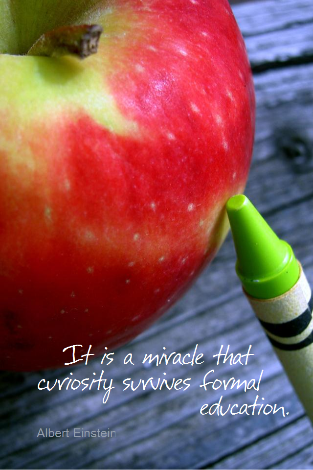 visual quote - image quotation for LEARNING - It is a miracle that curiosity survives formal education. - Albert Einstein