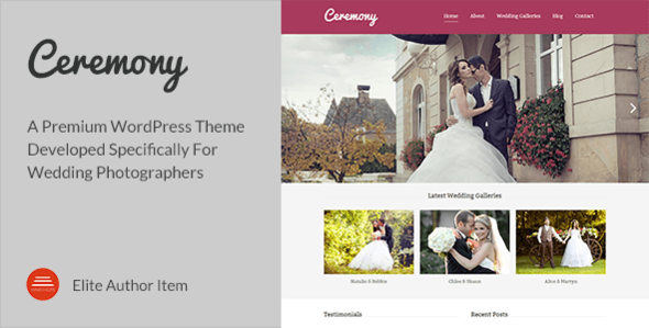 Wedding Website Template 2014