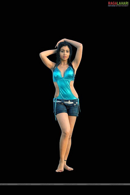 SHRIYA SARAN Hot Pose With Her Lovely Looks cleavage