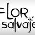 "Logo y sinopsis de ""Flor Salvaje"", la nueva telenovela de Telemundo"