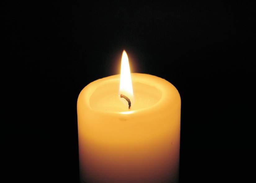 Die Kerzen und die Tabletten von der Hämorrhoide des Preises