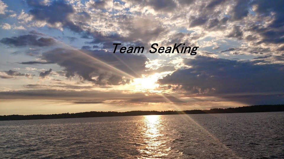 Team SeaKing