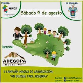 Un bosque para Arequipa