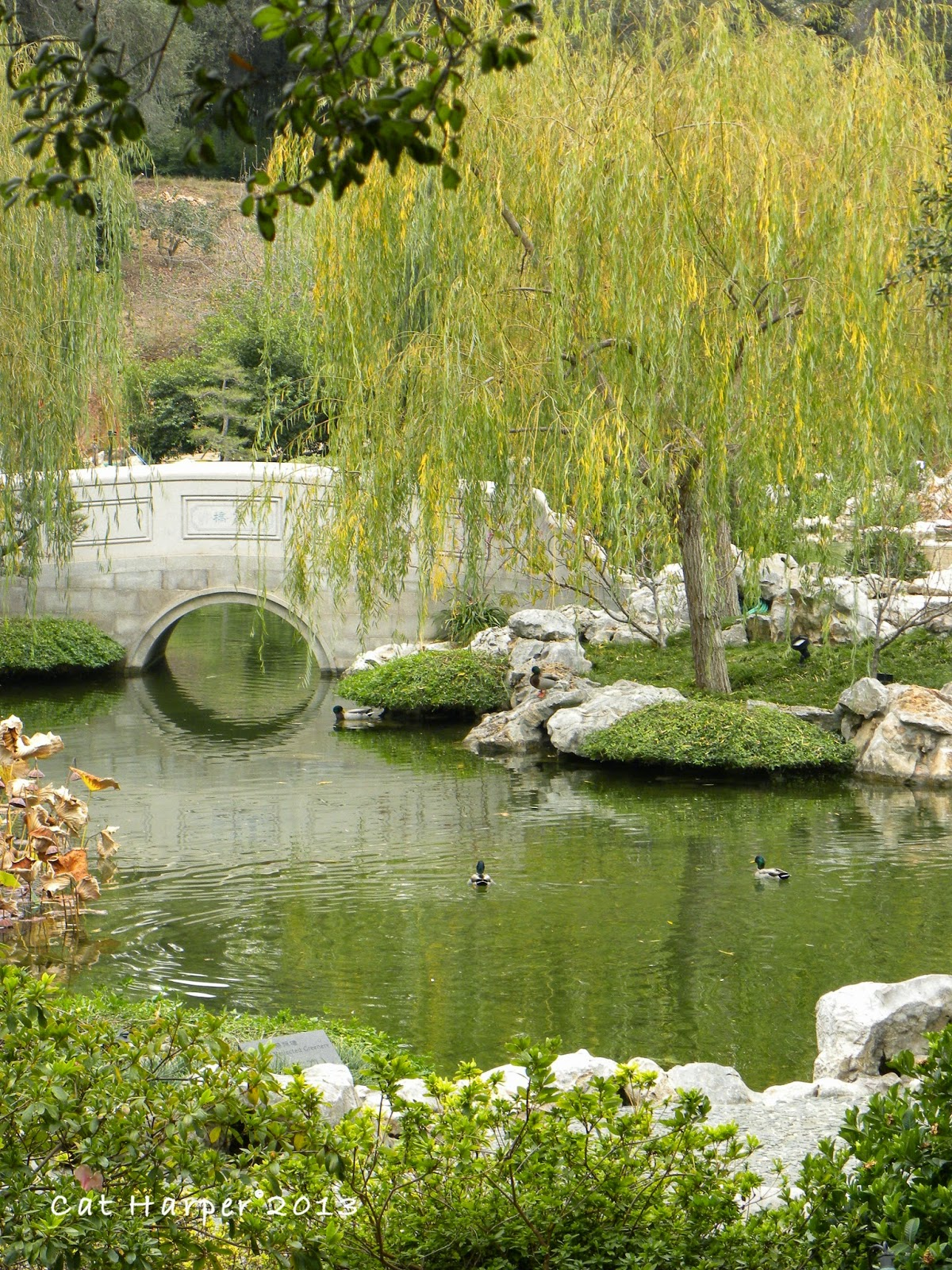 Shutterbug Traveler Los Angeles The Huntington Library The Chinese Garden