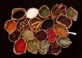 Obat Sipilis Tradisional