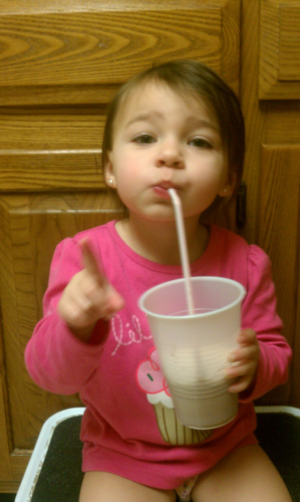 Tutus and Tea Parties: Frozen Hot Cocoa Ice Pops