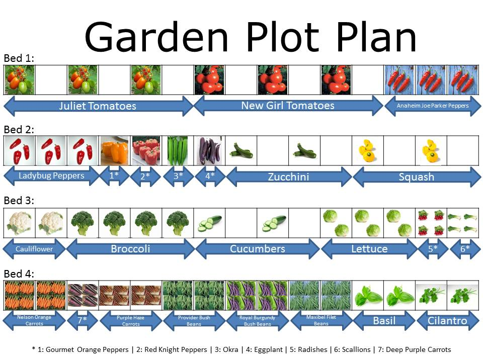 Come in veg out garden plot plan for Layout garden plots