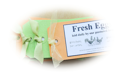 Fresh Eggs Business Cards Tori Beveridge AHWT