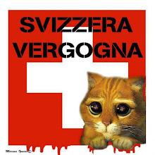Contro l'infame legge che permette ai cittadini svizzeri di abbattare i gatti randagi