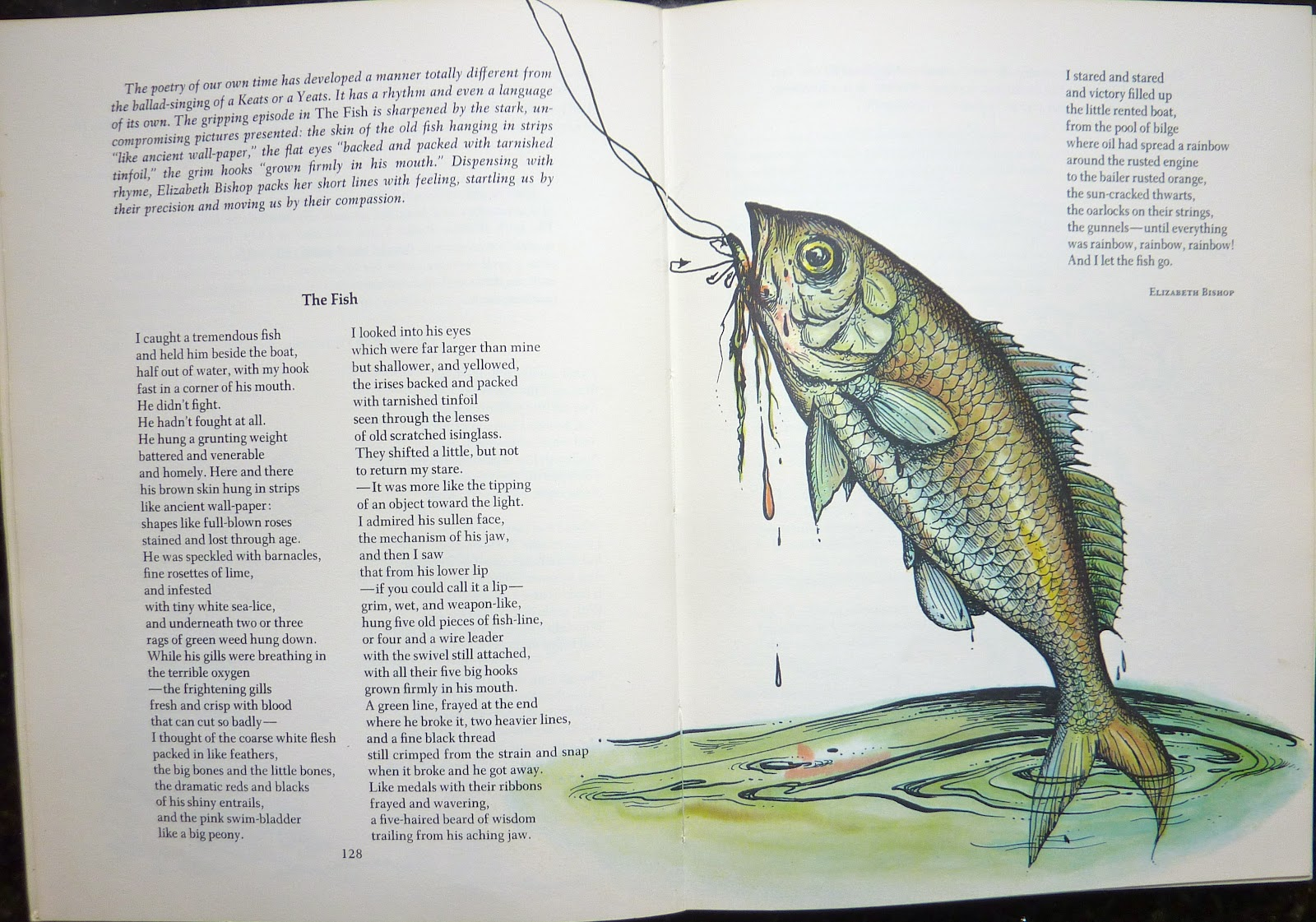 the fish by elizabeth bishop Read this poet's poems elizabeth bishop was born on february 8, 1911, in worcester, massachusetts when she was less than a year old, her father died, and shortly thereafter, her mother was committed to a mental asylum.