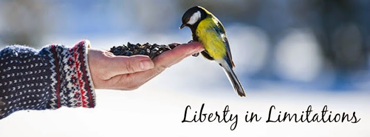 Liberty in Limitation