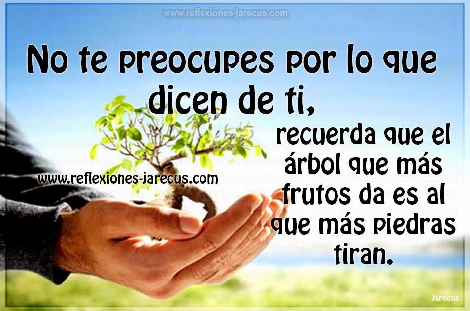 No te preocupes por lo que dicen de ti, recuerda que el árbol que más frutos da es al que más piedras tiran.