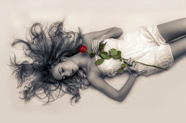 Dotek růže