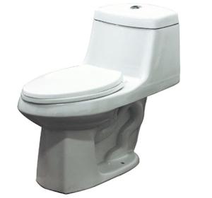 samson jackson toilet review