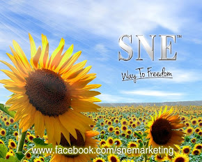 SNE MARKETING