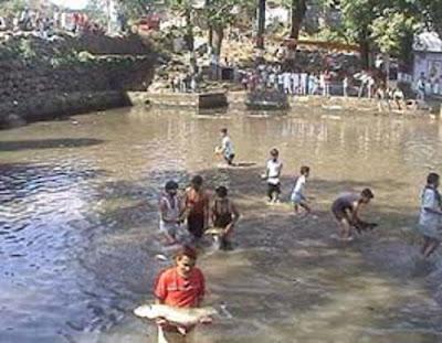 Himachali Song - Jal Vich Rove Machhli