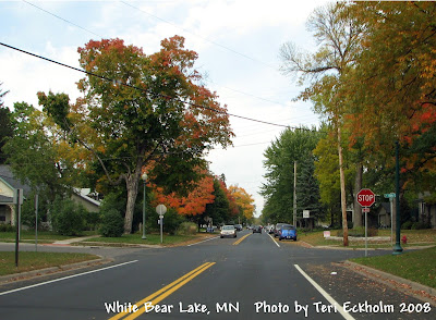 White Bear Lake MN Street Scene by Teri Eckholm REALTOR