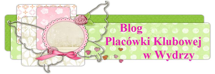 Witamy na blogu klubu w Wydrzy