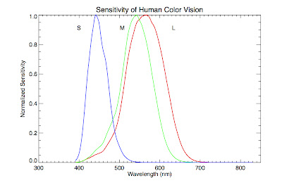 Plot of cone sensitivity vs. wavelength