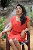 Samyuktha Hornad Glam pics-thumbnail-4