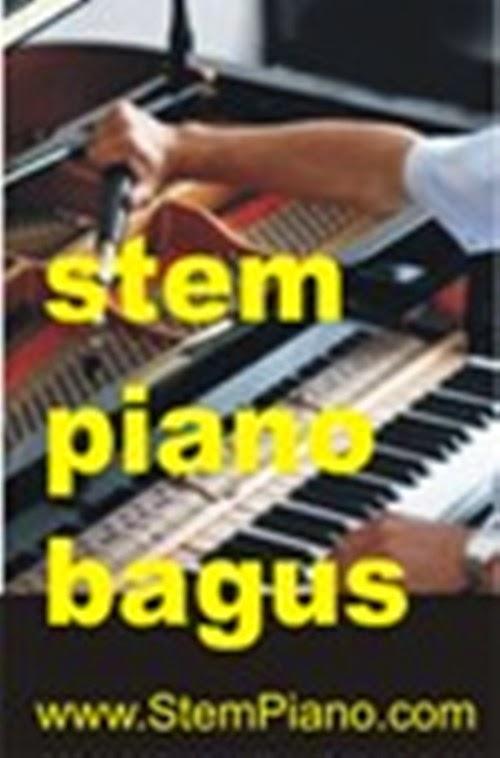 Stem Piano Profesional
