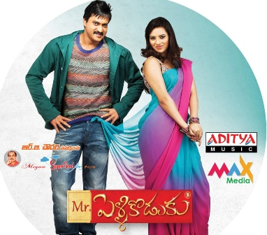 Watch Mr. Pellikoduku (2013) Telugu Movie Online