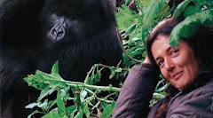 Gorilles dans la brume - Dian Fossey
