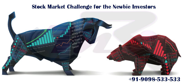 Stock Market Challenge for the Newbie Investors