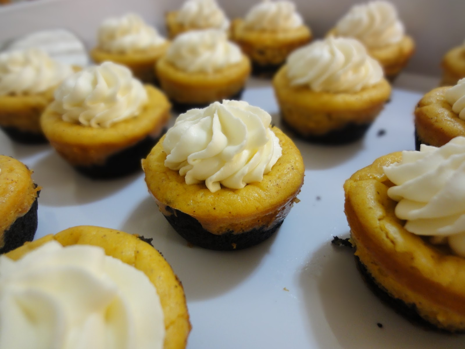 Blog as you Bake: Mini Pumpkin Cheesecakes