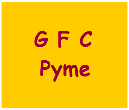 Grupo Gestión Financiera. Contable y Fiscal en la Pyme