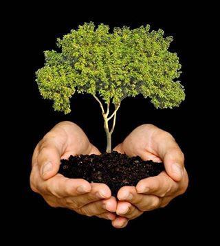 poemas+ecologicos+ecologia+medio+ambiente+planeta+tierra+