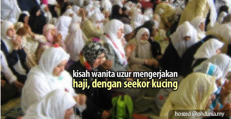 Kisah Benar Seorang Wanita Uzur Dengan Seekor Kucing Di Makkah