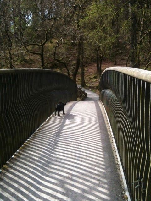 Bridge above Skelwith Force